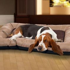 WaterResistant NonSlip Poly Canvas Base Cozy Critter Pet Bed Large Tan >>> Find out more about the great product at the image link.