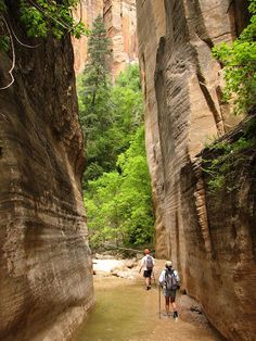 19 Awesome Hikes Under 5 Miles—The AJ List.
