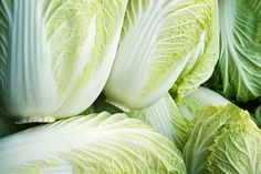 Chinese cabbage is high in nutrients that help prevent precancerous cells from turning cancerous. Chinese cabbage can generally be used interchangeably with bok choy in recipes, so try serving it with Szechuan Noodles.