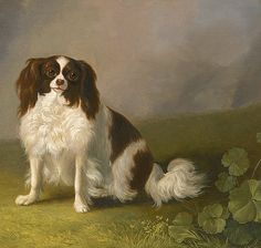 Jakob Philipp Hackert Portrait of a King Charles Spaniel 1788