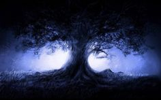 abstract tree wallpapers downloads Wallpaper