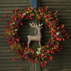 Gorgeous Christmas/holiday/winter wreath. I love the reindeer anchored at the center.
