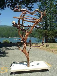 GW Sandblasted Manzanita Parrot Tree Stand bird perch PLAY STAND GYM