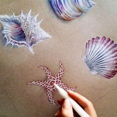 Sea inspired drawings on Toned Paper by Georgina Kreutzer