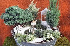 Winter Fairyland Miniature Garden