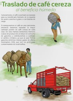 Guía de Buenas prácticas para café sustentable by emlain - issuu