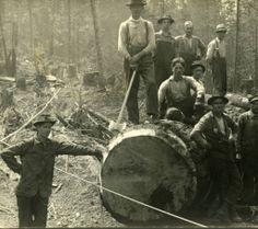 Old camp, group of men on log :: Enumclaw Heritage