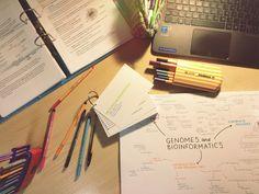 study & focus