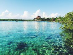 Cancun Guide: Hotels, places to visit, food/drinks..etc.. || Cheree&'mour