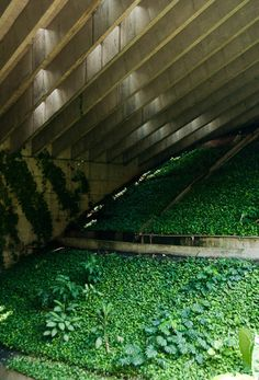 BNDES building, Rio de Janeiro, landscaping by Roberto Burle Marx