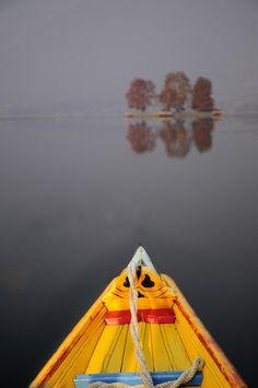Dal Lake, Srinagar, Kashmir - A shikara boat heads for the Char Chinar