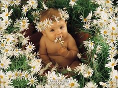 okay, so it's anne geddes, but, seriously... this is super cute.