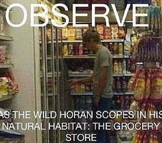 today we watch a creature we call the 'horan', otherwise known as the 'nialler' or the 'snowflake'. it is advised to keep away from this creature during its eating hours.