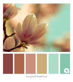 ♡ color palette ♡