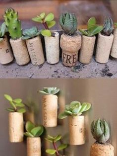 wine cork planters with succulents! Wine Cork Crafts, Bottle Crafts, Garden Projects, Diy Projects, Upcycling Projects, Garden Ideas, Suculentas Diy, Mini Vasos, Room With Plants