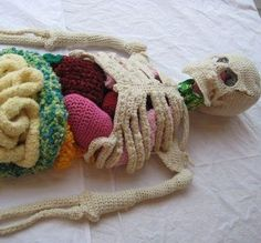 crochet anatomy class project or art work ??!! would be cool kids craft  :: FineCraftGuild.com
