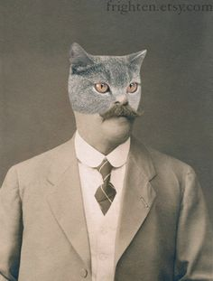 Cat Art, Cat Man, Anthropomorphic Altered Vintage Photo, frighten via Etsy.