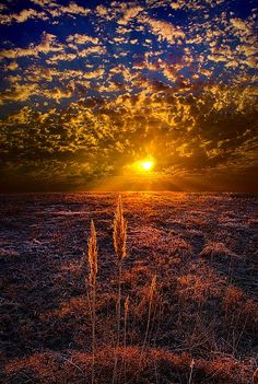Astonishing Sunrise and Sunset Photos � Part 1 I don't know where this is - but I want to be there!