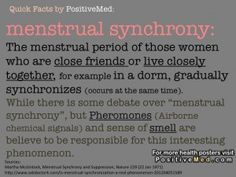 Menstrual synchrony :  For more informations please visit : http://positivemed.com/