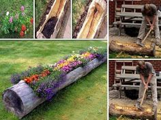 A wonderful Idea! For more information and tutorial visit: http://diycozyhome.com/how-to-make-a-hollow-log-planter/