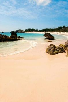 Pink Sand Beach Bermuda Shorts