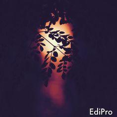 SkyLip — EDIPRO - IOS PHOTO EDITING APP  BY SKYLIP.COM  ...