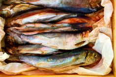 Beatrice Peltre   Salted Fish, Market in Palermo, Sicily