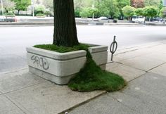 guerrilla gardening. Using archived version.  Original link is dead