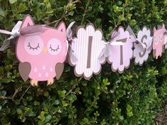 Pink Owl Baby Shower BannerIts A Girl by ClassyAndSimple on Etsy, $25.50
