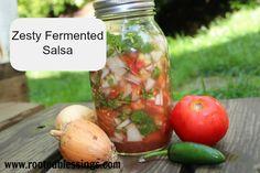 Zesty Fermented Salsa