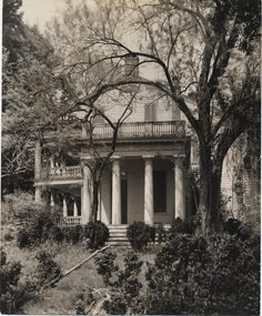 Rosedown Plantation, St. Francisville, Louisiana.