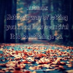 A little Food for thought this season: Falling leaves, like life, can sometimes be best lived when we learn to let things go that no longer serve us and add purpose to our lives. Take a page from nature. Let things go. #quote #fall2016 #fall #autumn