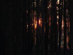 Закат. Сибирь.