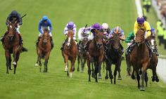 Thoroughbred Horse Racing - Come bet with me - 2 for 1 up to $A150.0