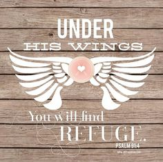 ...Under his wings. Psalms 91