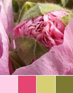 Colour collage by mo man tai