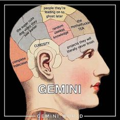 Witty, humorous and unpredictable, Gemini are someone that you hate or love. If you are one of them, these funny Gemini memes may speak your mind. Gemini Traits, Gemini Life, Zodiac Sign Traits, Gemini Woman, Zodiac Signs Astrology, Zodiac Star Signs, My Zodiac Sign, Gemini And Gemini, Gemini Ascendant