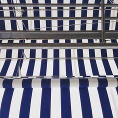 Comenzando el Año Nuevo trabajando al aire libre!!!🎼🎼👩🏻🌾🐜🌴🍃🎼🎼 #sofialapenta #inspiracion #scarf #gift #fashion #fashiondesign #drawing #designed #ilustracion #illustration #surrealism #art #sketchbook #love #work #artwork #studio #painting #welivetoexplore  #spreadlove  #visualsoflife #welltraveled  #explore #traveltheworld