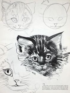 how_to_draw_cats_3