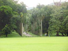 Botanical Gardens, Golf Courses