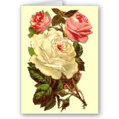 Vintage Pastel Roses Mothers Day Cards by Lori Leidig