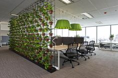 A hygge office design - The quiet room at Knight Frank's Sydney office at Angel Place, where staff enjoy the benefits of a green wall. Industrial Office Design, Office Space Design, Workplace Design, Office Interior Design, Office Interiors, Office Spaces, Open Concept Office, Open Office, Office Dividers