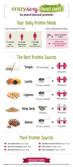 Learn the basics of plant-based protein options in this great infographic outlining recommended protein amounts and sources.