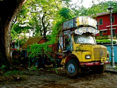 Abandoned truck in Cochin, India.