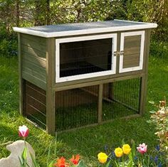 A Chic Rabbit Hutch With Integrated Run. This Fresh Green Hutch Is Ideal For Keeping Pets Outside. Easy To Assemble. Rabbit Shed, Rabbit Hutch Plans, Large Rabbit Hutch, Rabbit Run, Rabbit Hutches, Indoor Rabbit Cage, Rabbit Cages, Hedgehog House, Large Rabbits