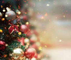 특별한 크리스마스가 되려면 지금부터 준비해야 할 것은?