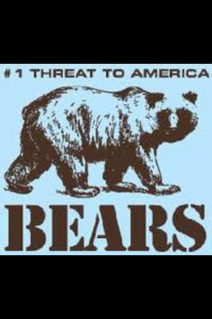 Bears, they are hard to find.