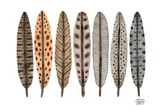 LARGE Terra Feathers Collection Print giclee print by GollyBard