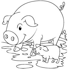 pig in mud coloring pages - photo#18