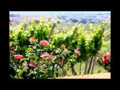 Vacation in Italy - Fattorie Poggio Nebbia - Tarquinia -